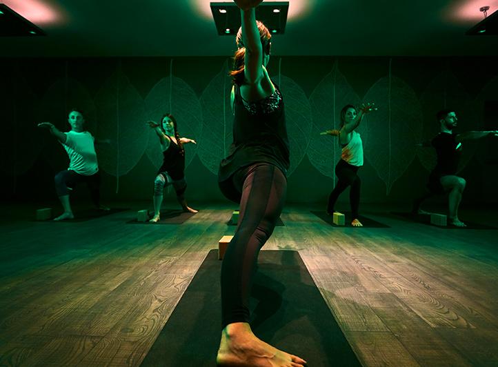 Yoga Align - Iyengar