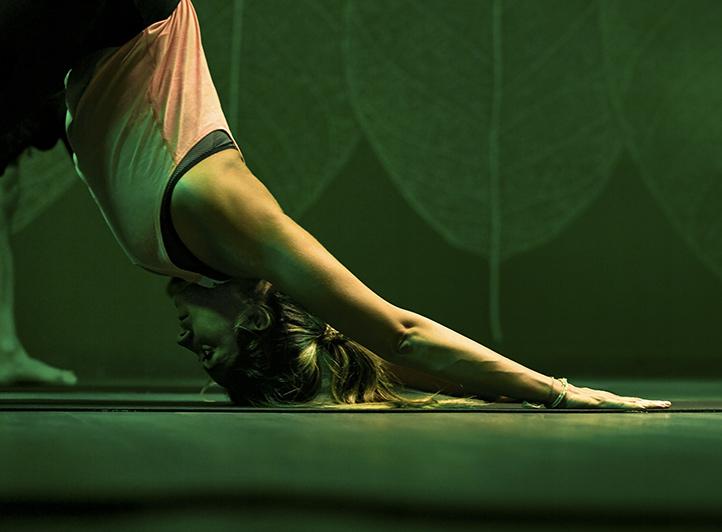 Yoga Align - Hatha