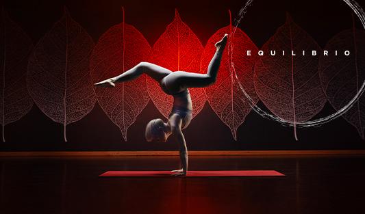 533x355_HP_Equilibrio